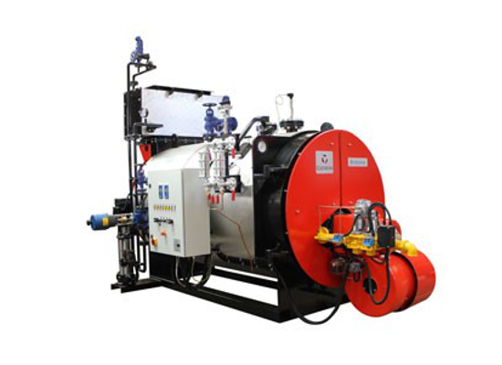 Steam-Boiler-Model-Borderer